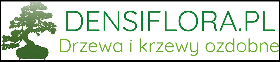 densiflora-logo